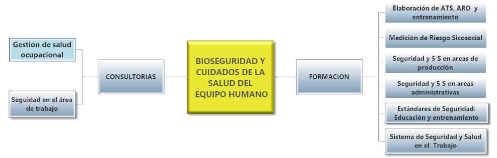 Necesidades y Bioseguridad y Salud